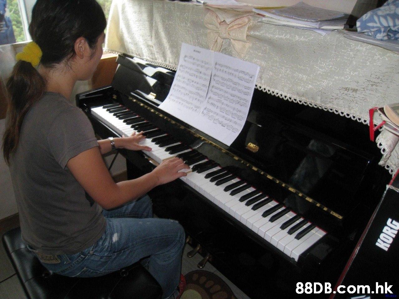 torutrtre CICE .hk KORG  Musical instrument,Piano,Electronic instrument,Musical keyboard,Keyboard