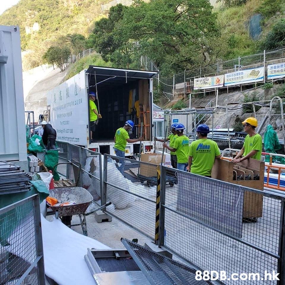 定原检查 地里外生 WILetranoxt.com Meko .hk  Tree,Architecture,Construction,