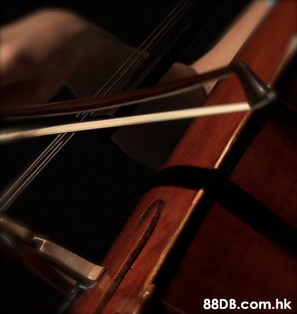 .hk  String instrument,Musical instrument,Bowed string instrument,String instrument,