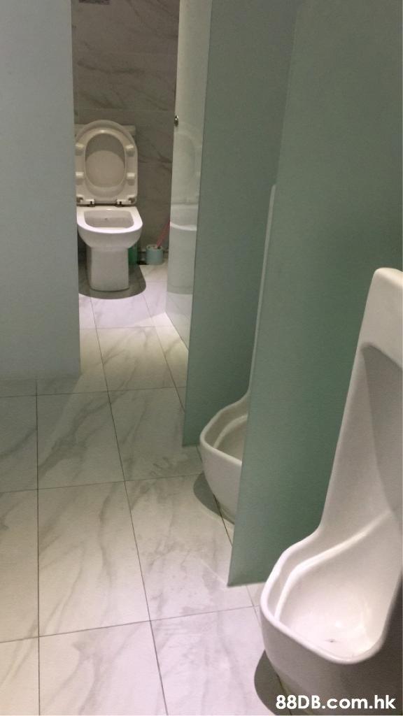 .hk  Toilet seat,Toilet,Tile,Bathroom,Property