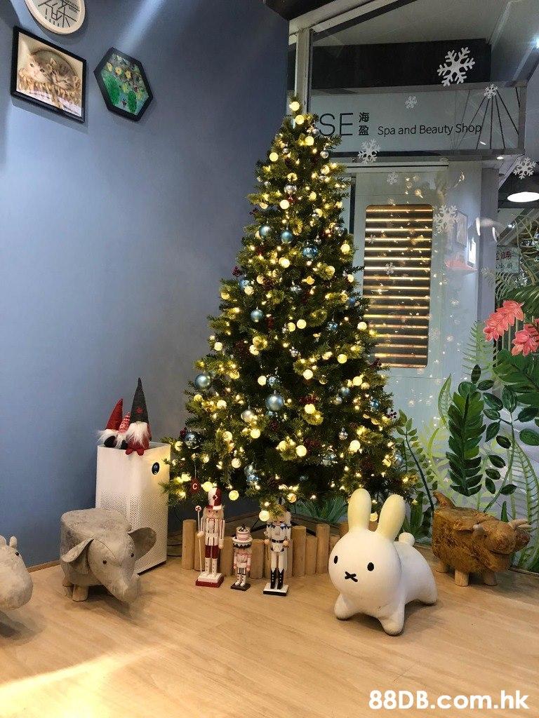 海 SE Spa and Beauty Shop .hk  Christmas tree,Christmas,Christmas decoration,Tree,Christmas ornament