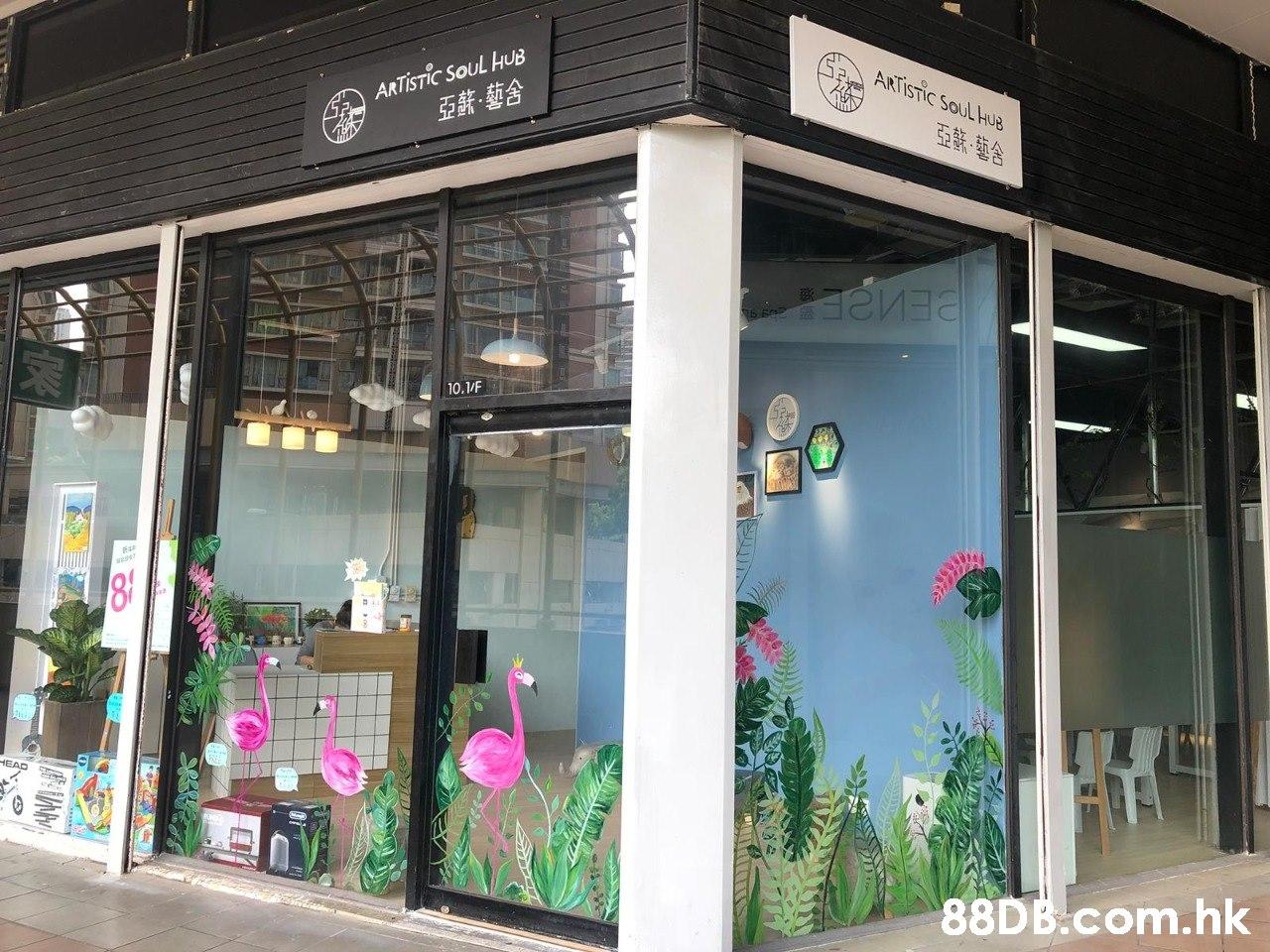 ARTÍSTIC SOUL HUB 亞葉-藝舍 ANTISTIC SOUL HUB еиза 10.1/F 81 HEAD .hk  Building,Facade,Floristry,Display window,Glass