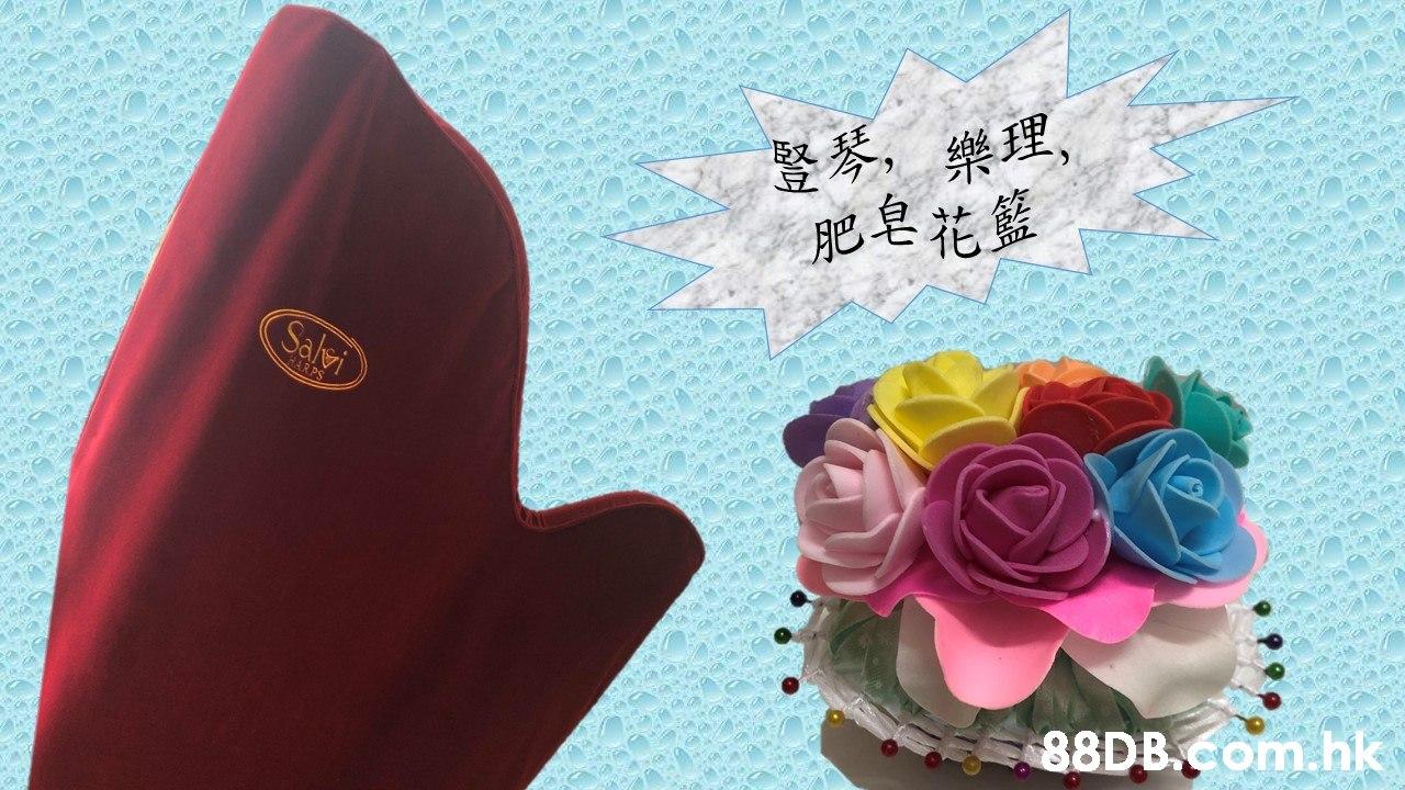 豎琴,樂理, 肥皂花籃 Salei HARPS .hk  Pink,Rose,Font,Flower,Rose family