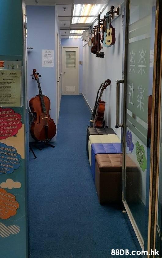 興趣班 648日 .hk  Room,String instrument,Floor,Flooring,Building