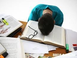 大學功課 (assignment、essay、homework)、畢業論文指導