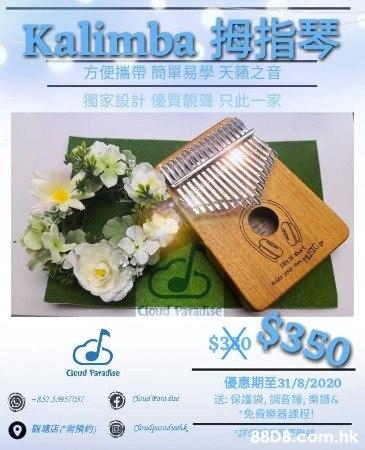 自家設計靚聲優質Kalimba 姆指琴17音 (獨家款) 購買送30分鐘樂器課程(可自由選擇流行鋼琴/古典鋼琴/豎琴/唱歌......)